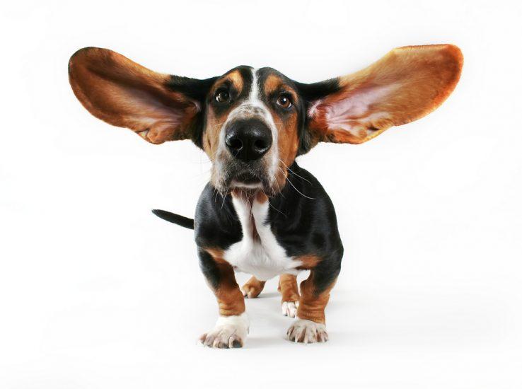 Бинауральное слухопротезирование